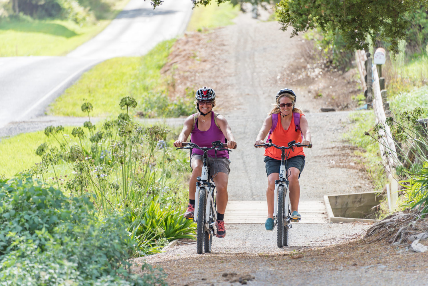 Hire eBikes on Cycle Trail