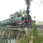 BOI Steam Train