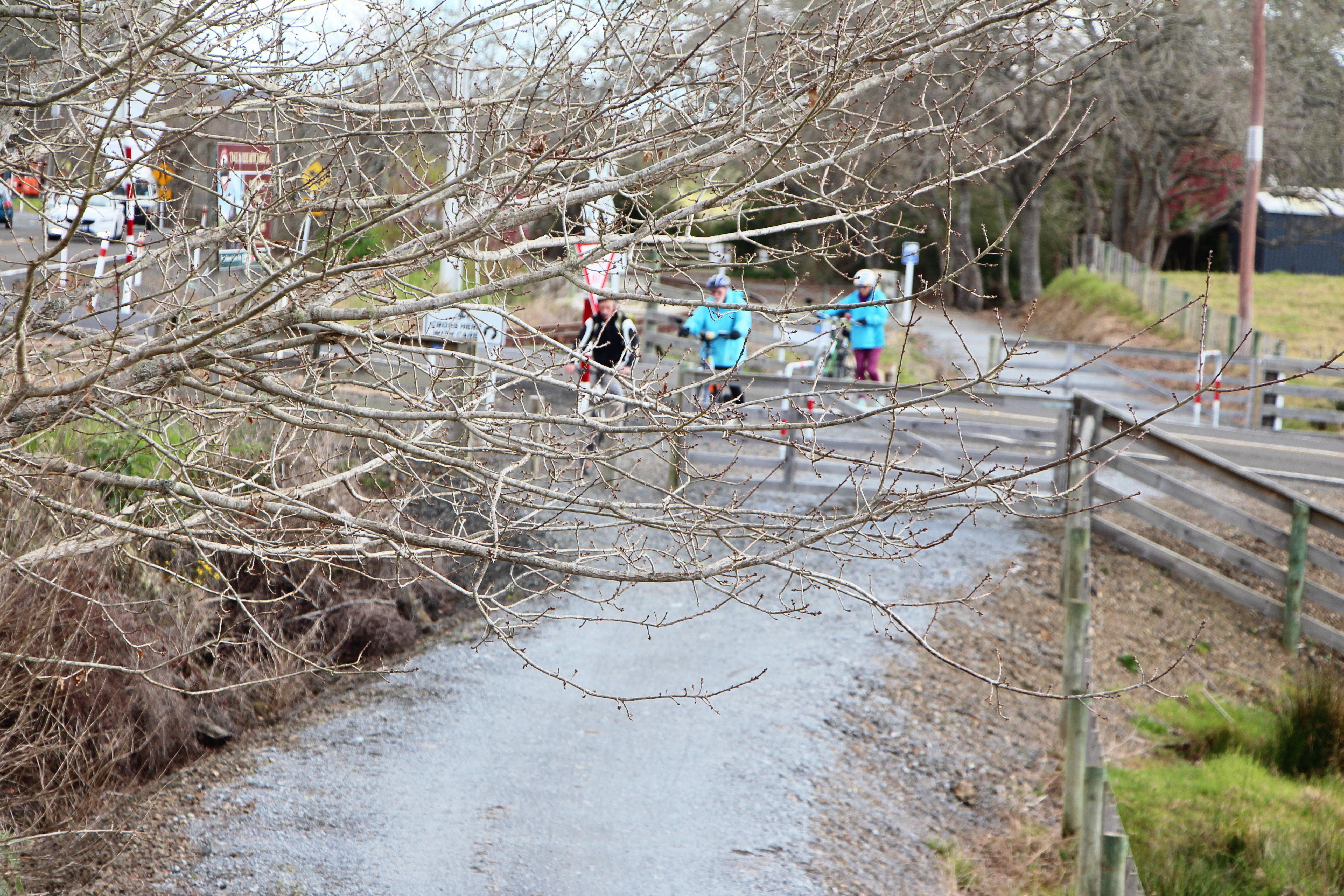 Cyclists Kawakawa