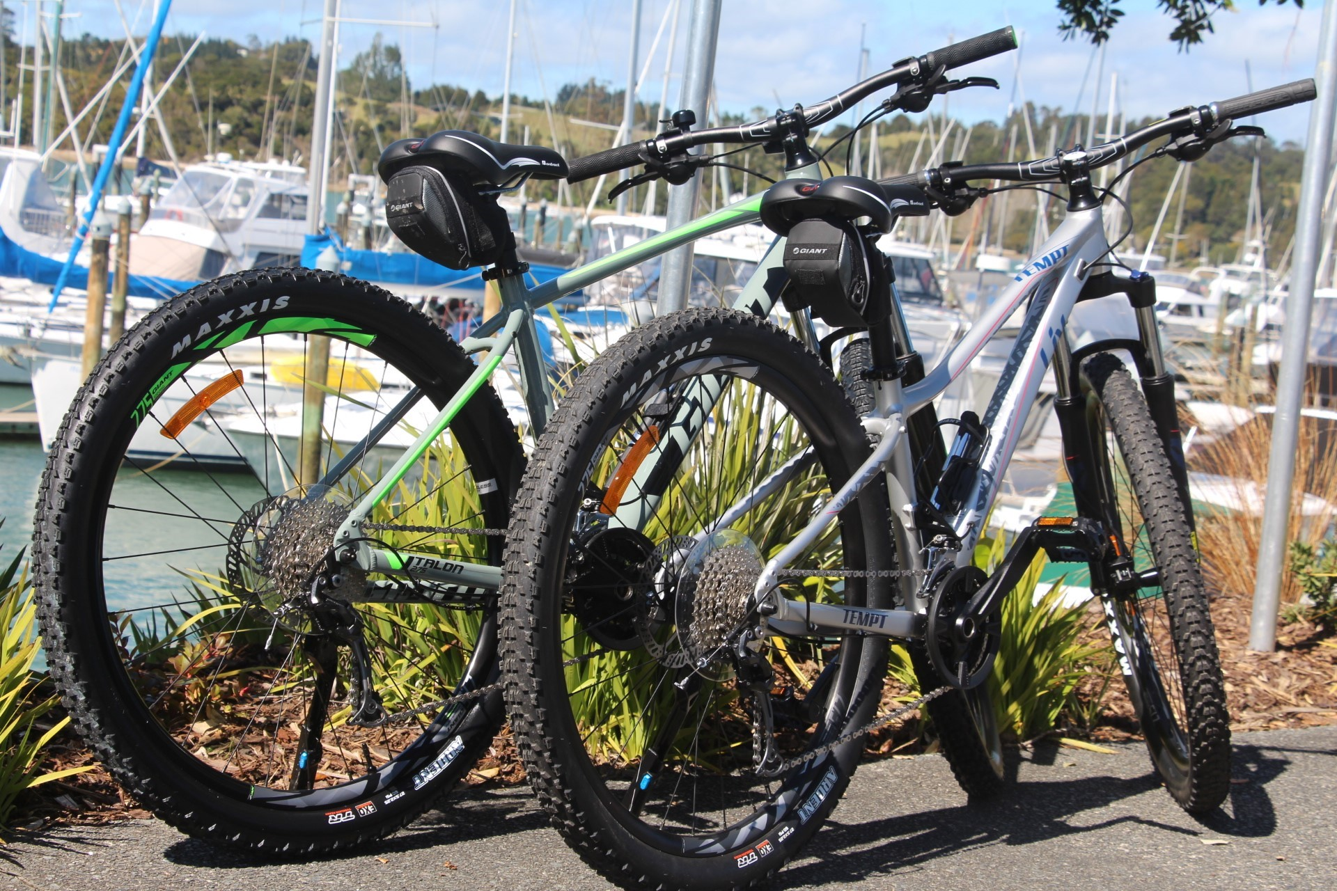Bike hire at Opua